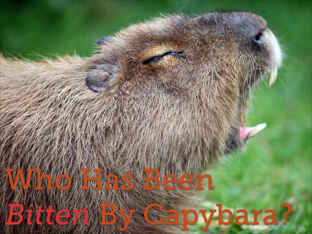 Who Has Been Bitten By Capybara?