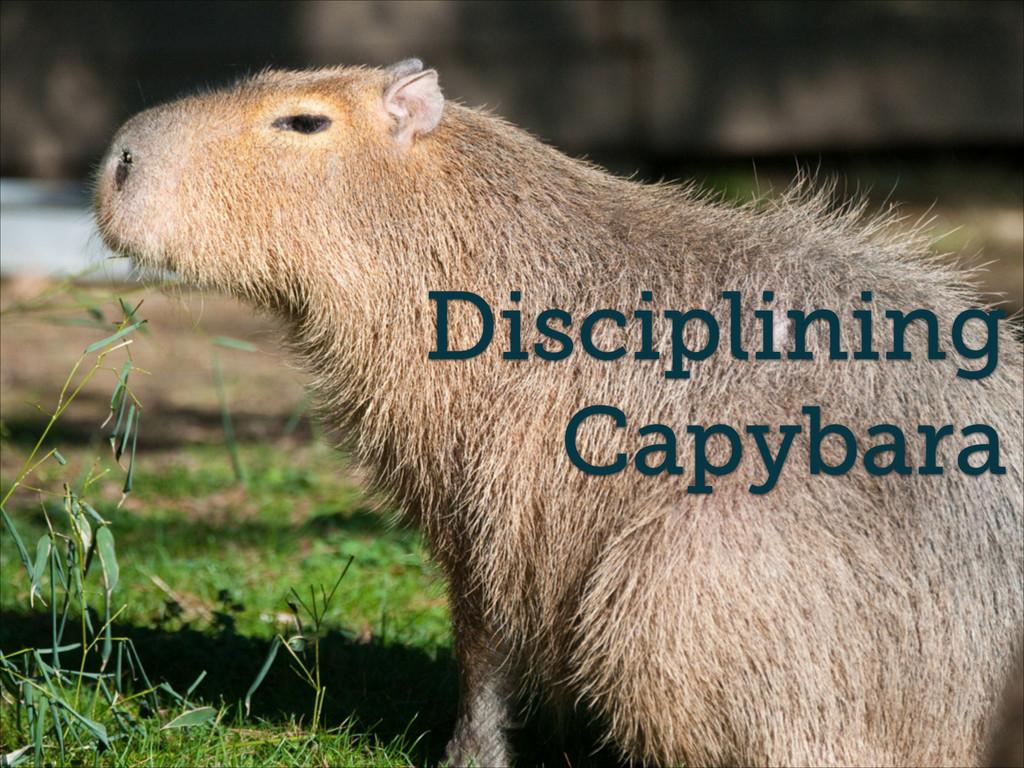 Disciplining Capybara