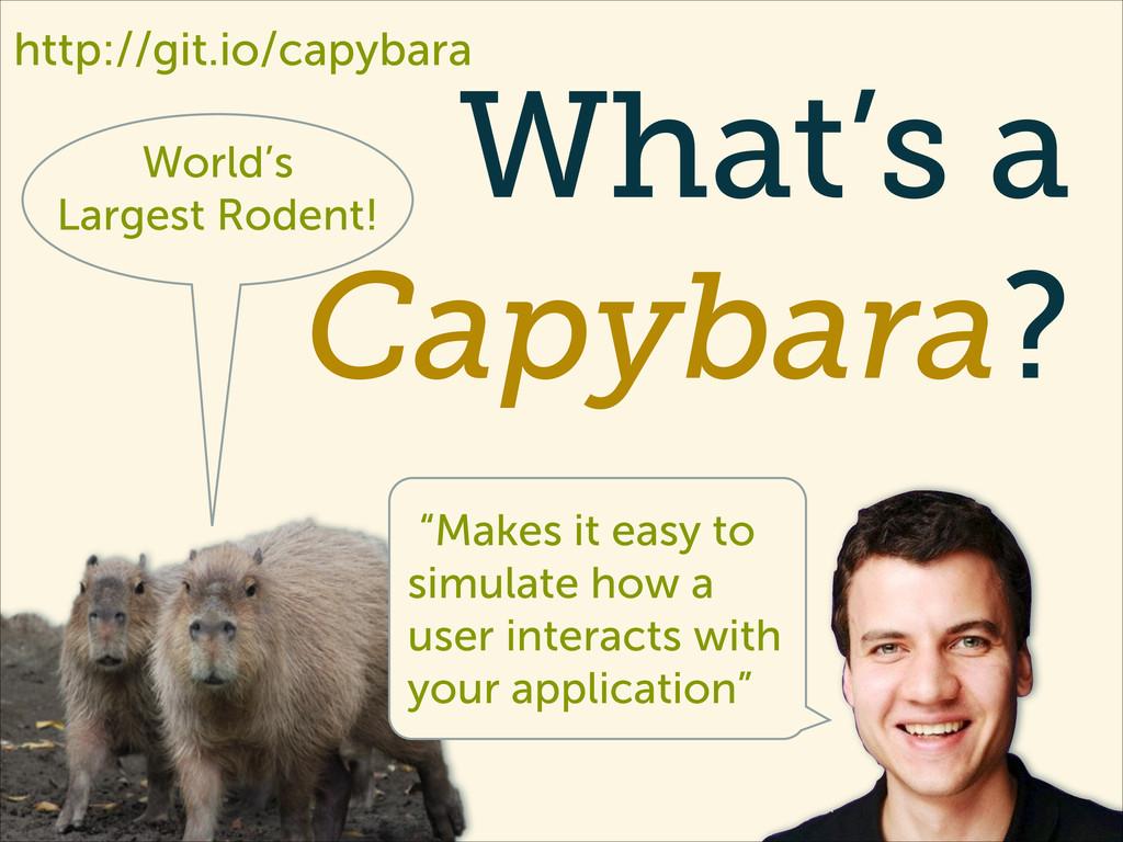 "What's a Capybara? World's Largest Rodent! ""Mak..."