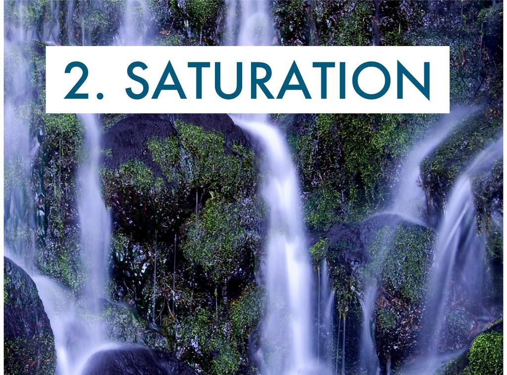 2. SATURATION