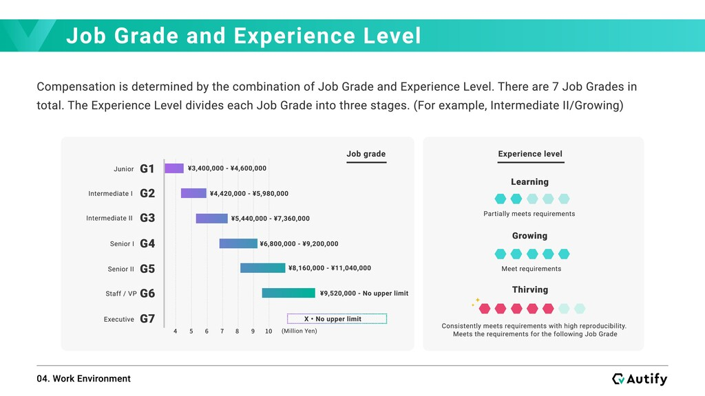Job Grade and Experience Level 04. Work Environ...