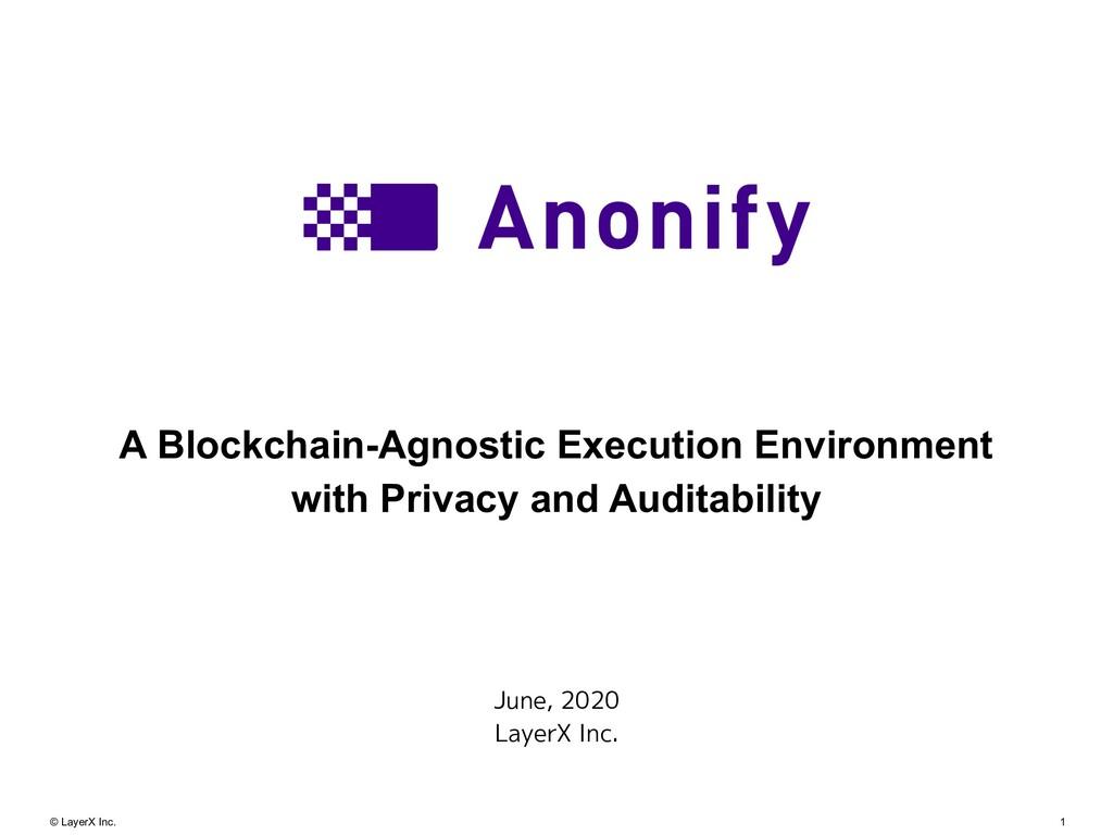 1 © LayerX Inc. A Blockchain-Agnostic Execution...