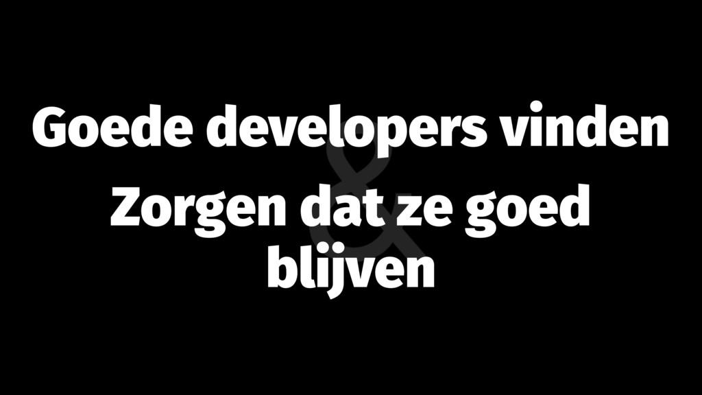 Goede developers vinden Zorgen dat ze goed blij...