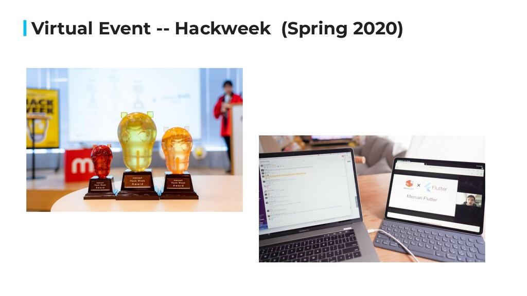 Virtual Event -- Hackweek (Spring 2020)