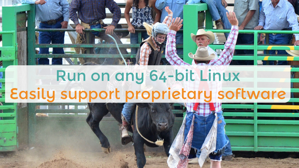 Run on any 64-bit Linux Easily support proprie...