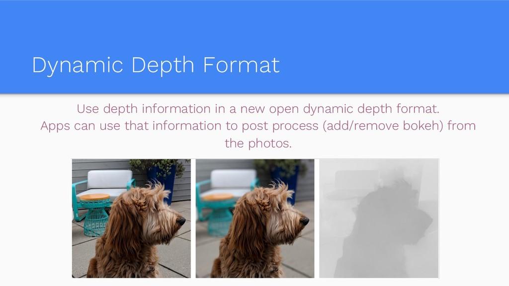 Dynamic Depth Format Use depth information in a...