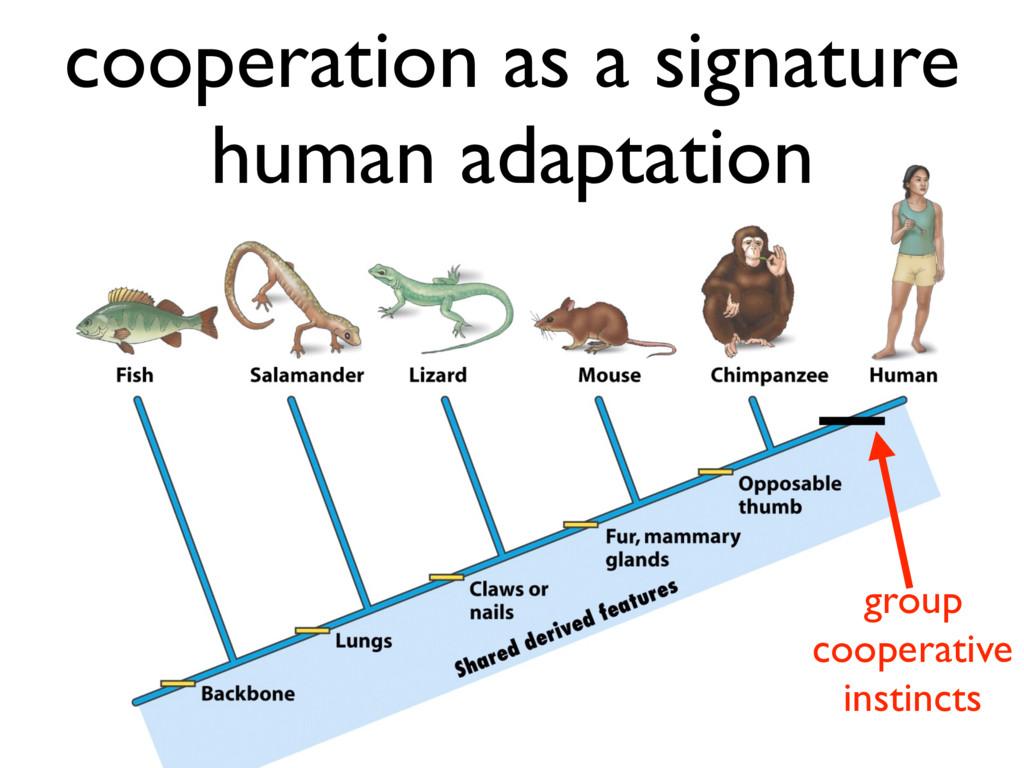 cooperation as a signature human adaptation gro...