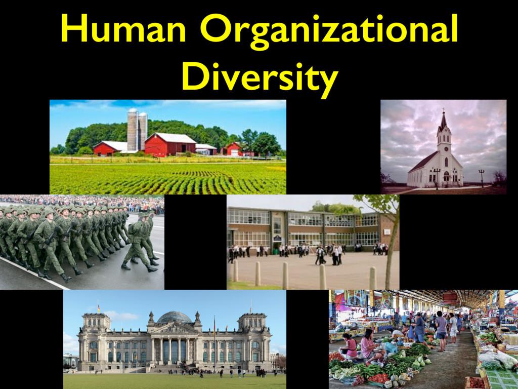 Human Organizational Diversity
