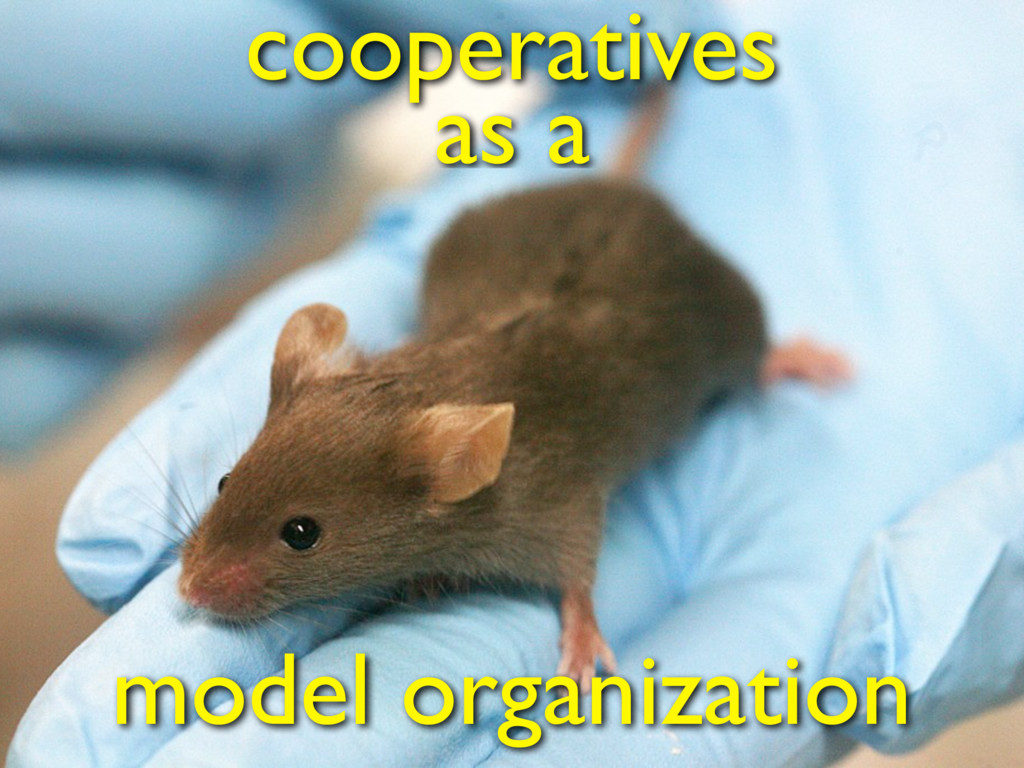 model organization cooperatives as a