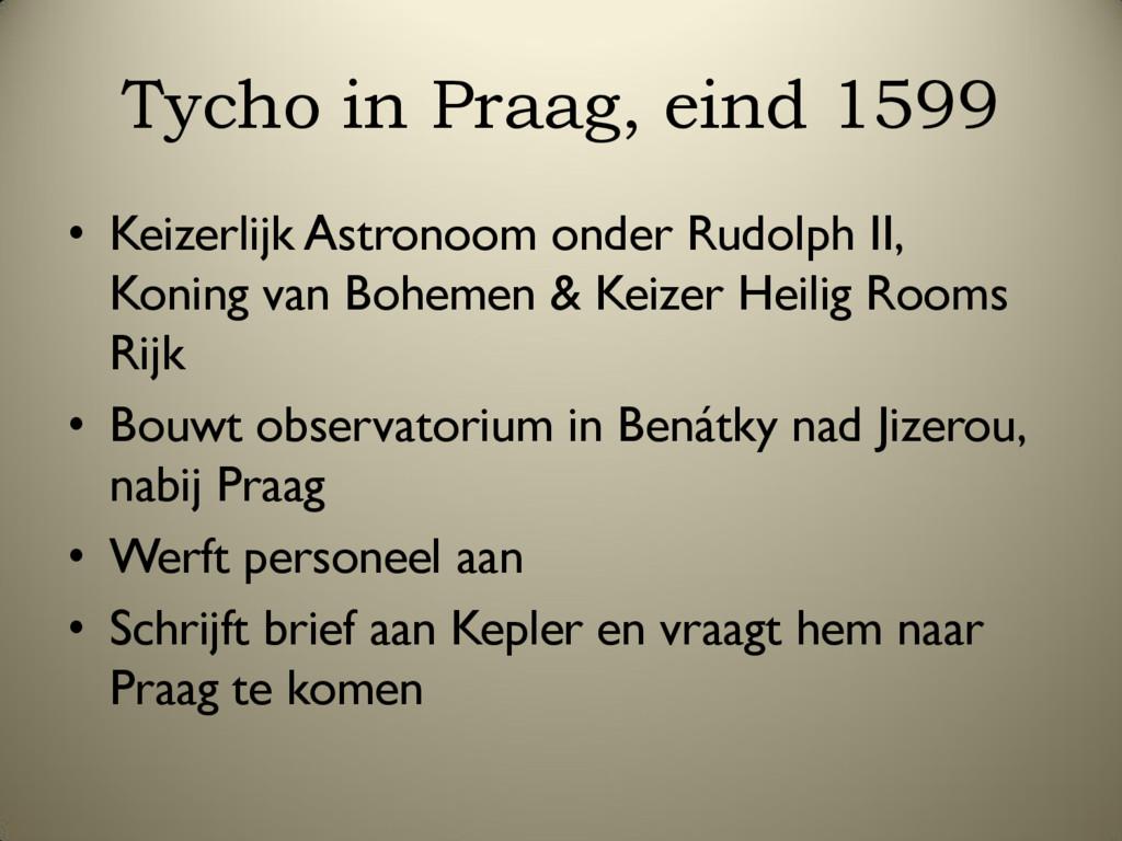 Tycho in Praag, eind 1599 • Keizerlijk Astronoo...