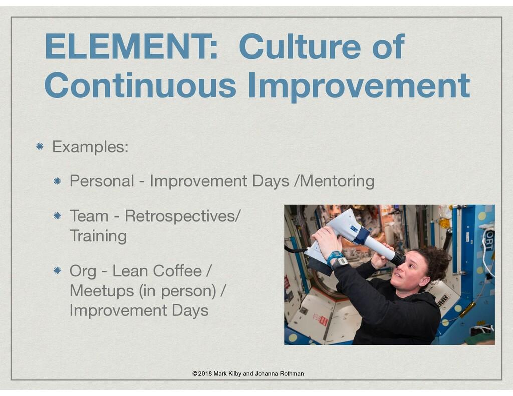 ELEMENT: Culture of Continuous Improvement © 20...