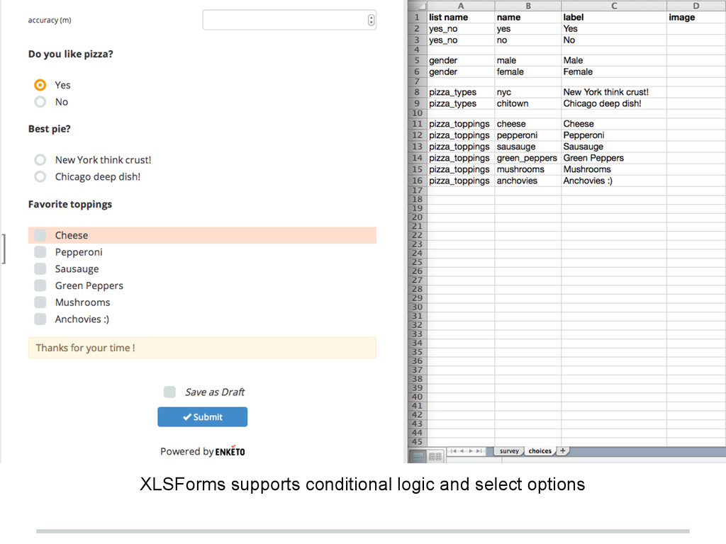 XLSForms supports conditional logic and select ...