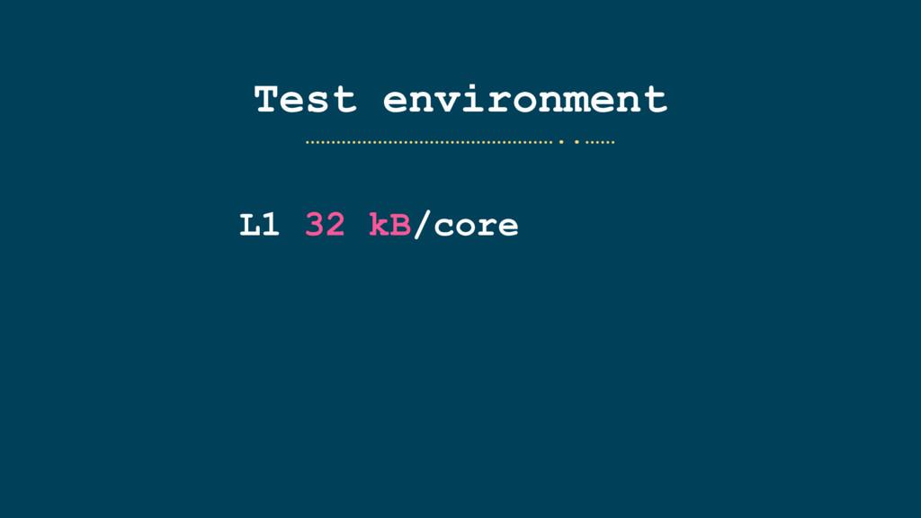Test environment L1 32 kB/core …………………………………………...