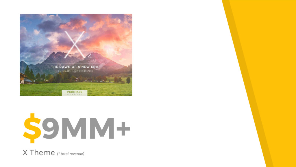 $9MM+ X Theme (* total revenue)
