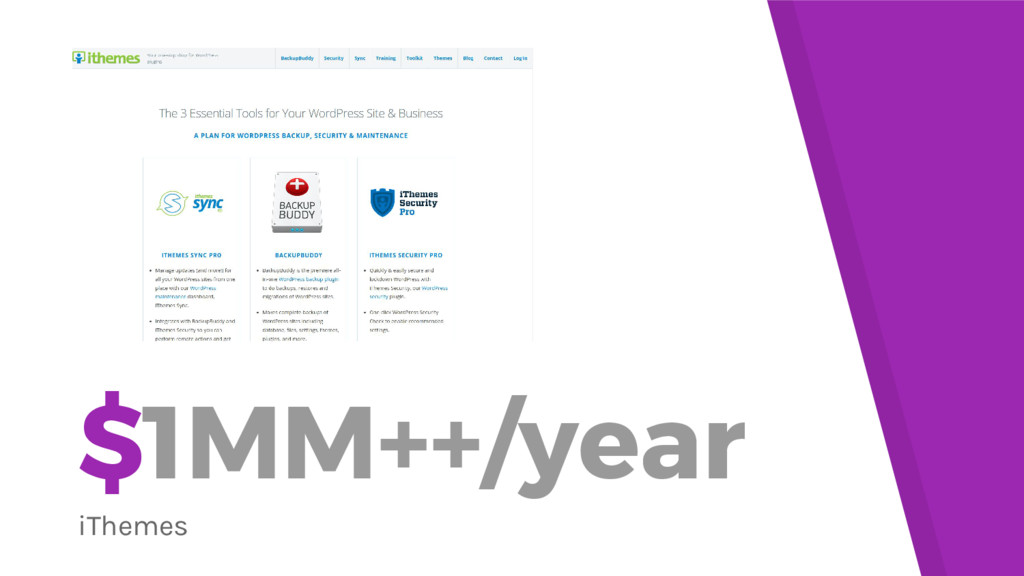 $1MM++/year iThemes