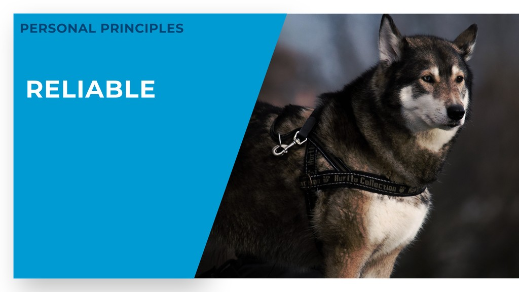 RELIABLE PERSONAL PRINCIPLES