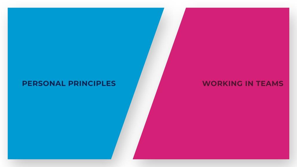 PERSONAL PRINCIPLES WORKING IN TEAMS