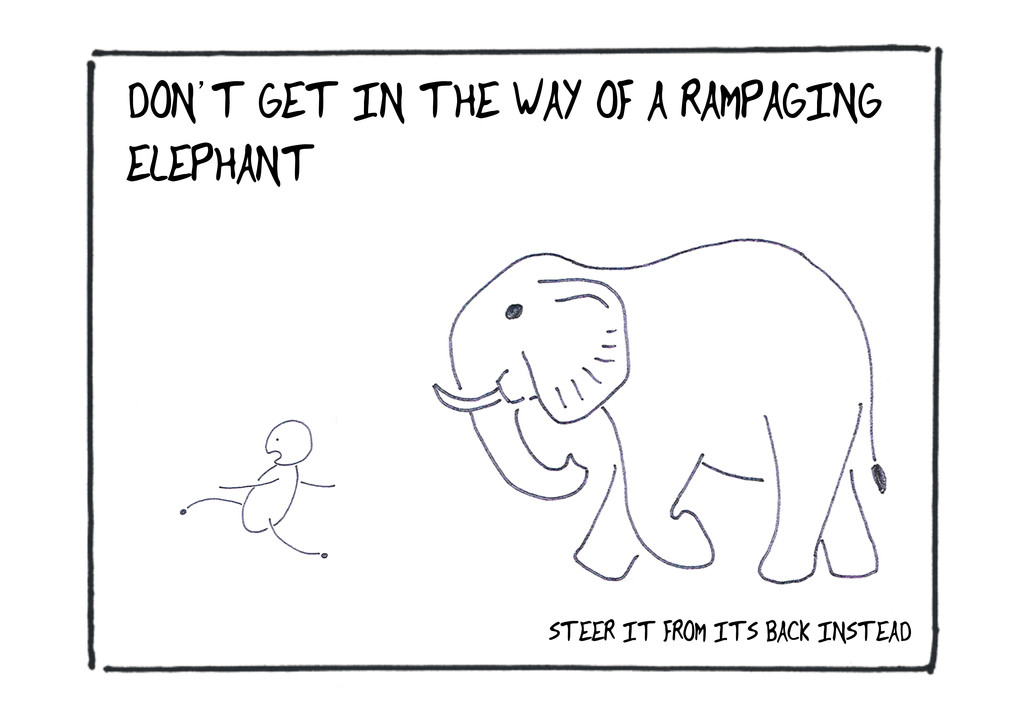 DON'T GET IN THE WAY OF A RAMPAGING ELEPHANT ST...