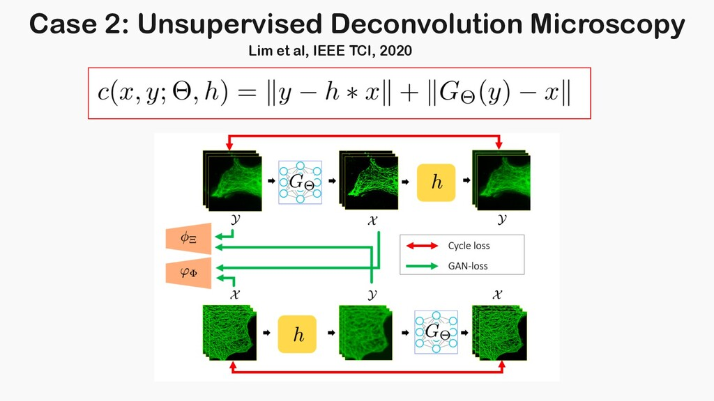 Case 2: Unsupervised Deconvolution Microscopy L...
