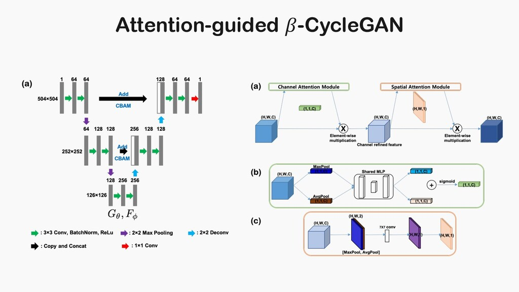 Attention-guided -CycleGAN
