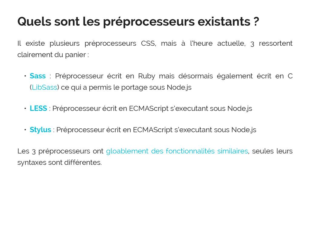 Quels sont les préprocesseurs existants ? Il ex...