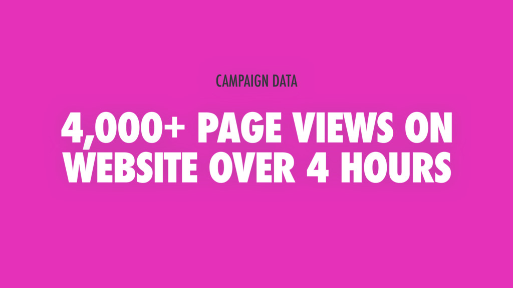 4,000+ PAGE VIEWS ON WEBSITE OVER 4 HOURS CAMPA...