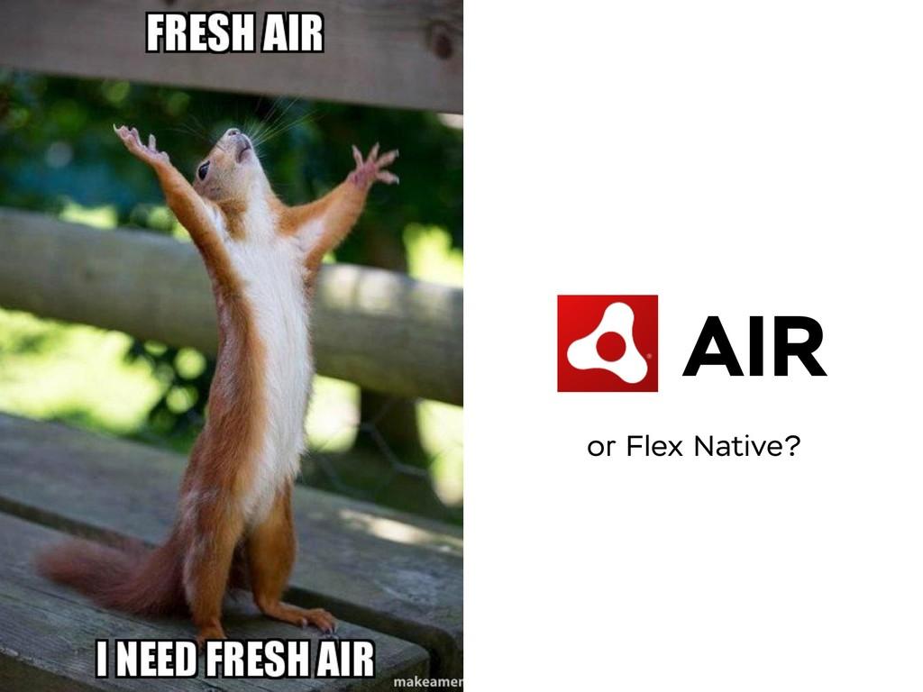 AIR or Flex Native?
