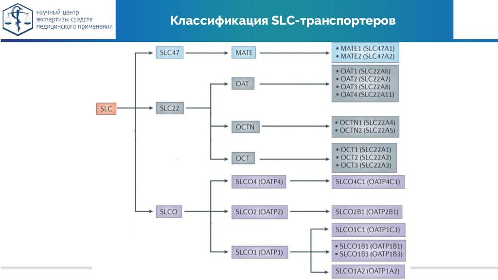 Классификация SLC-транспортеров