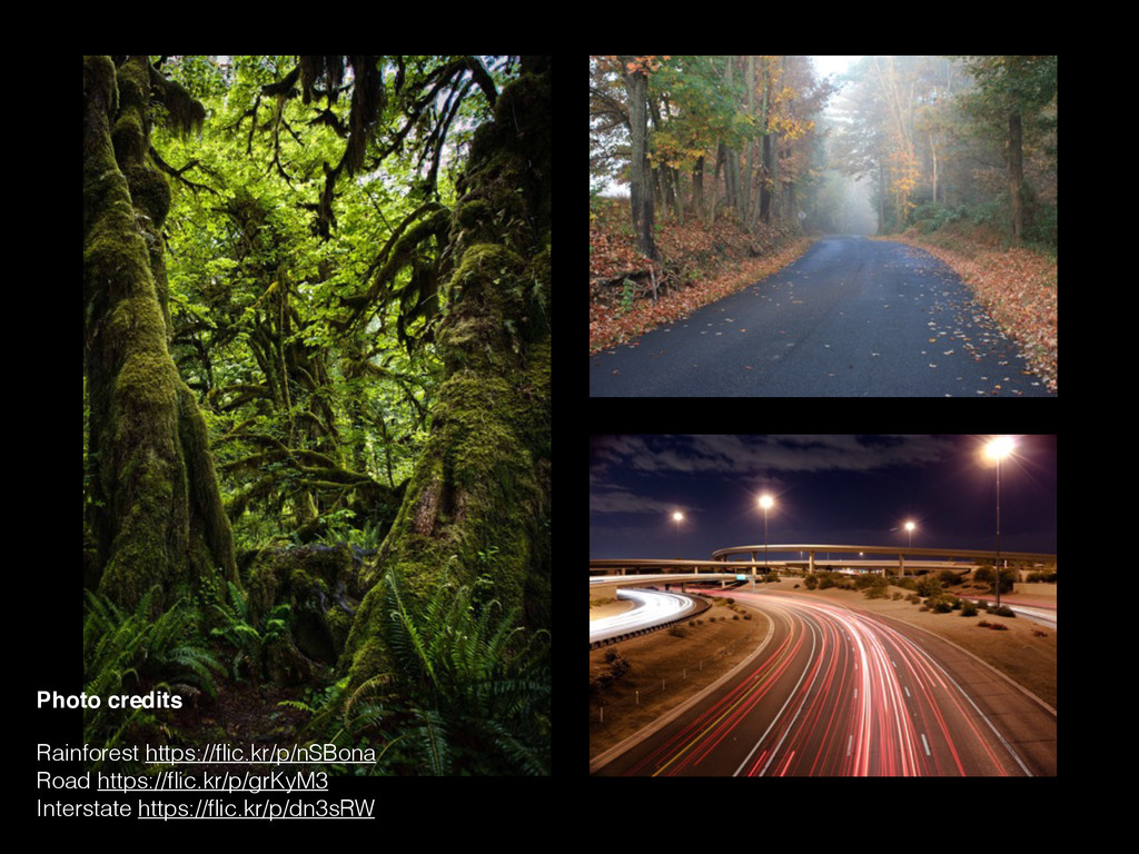 Photo credits Rainforest https://flic.kr/p/nSBon...