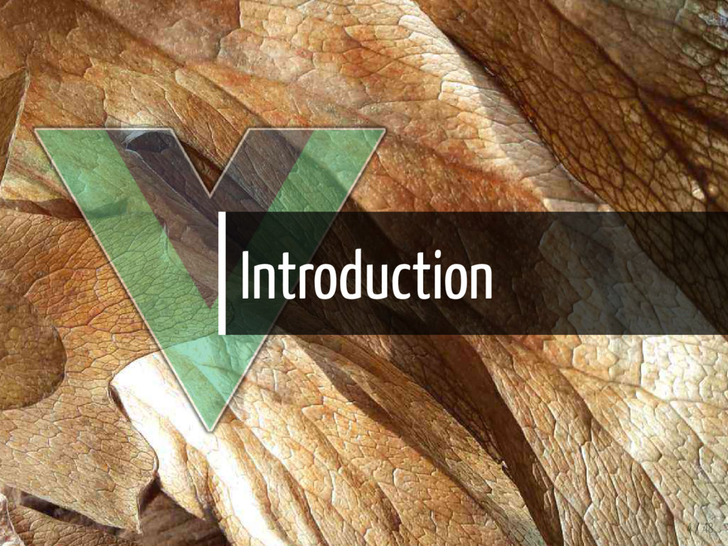 Introduction 4 / 48