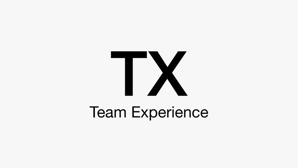 Team Experience TX