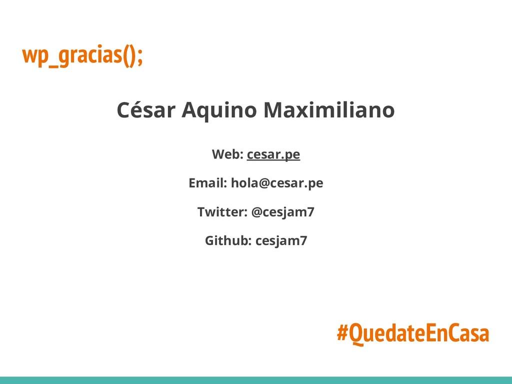 wp_gracias(); César Aquino Maximiliano Web: ces...