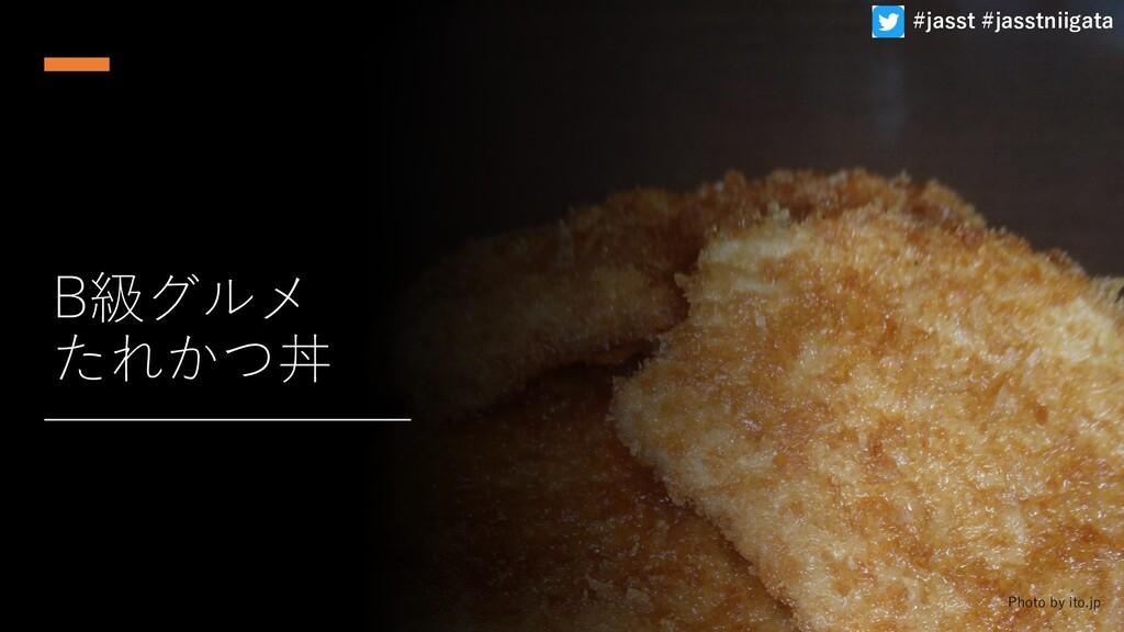 B級グルメ たれかつ丼 Photo by ito.jp #jasst #jasstniigata