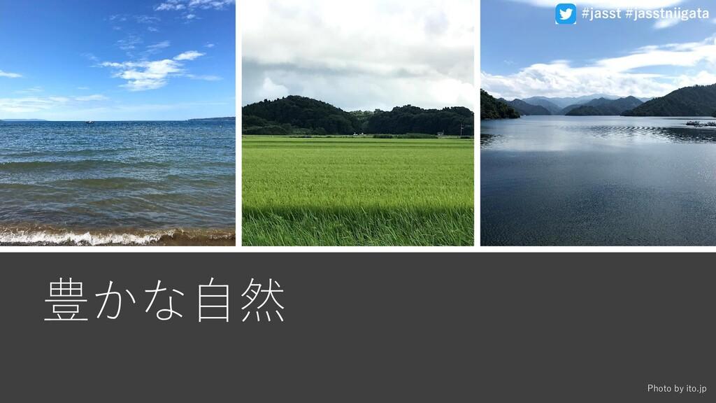 豊かな自然 Photo by ito.jp #jasst #jasstniigata