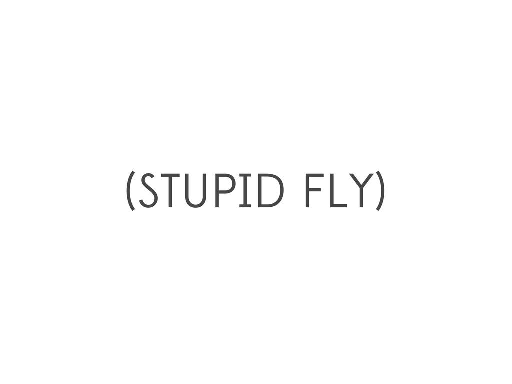 (STUPID FLY)