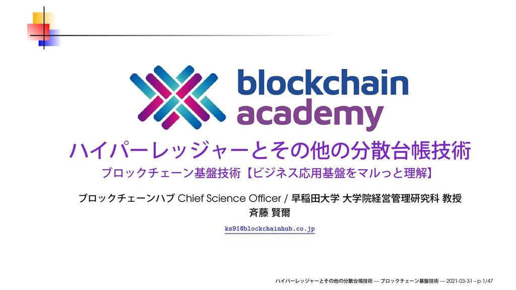 Chief Science Officer / ks91@blockchainhub.co.jp...