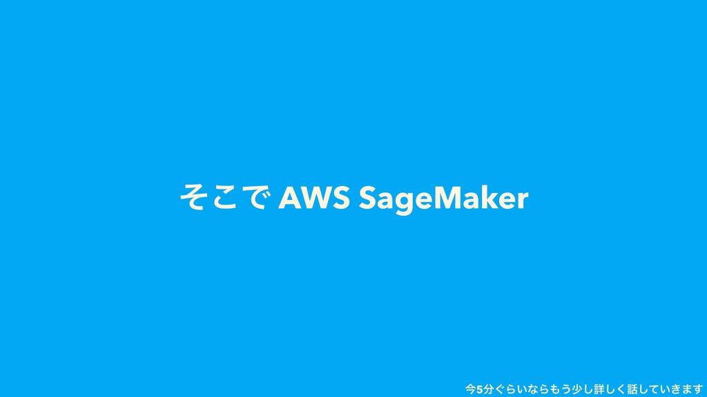 ͦ͜Ͱ AWS SageMaker ࠓ5͙Β͍ͳΒ͏গ͠ৄ͍͖ͯ͘͠͠·͢