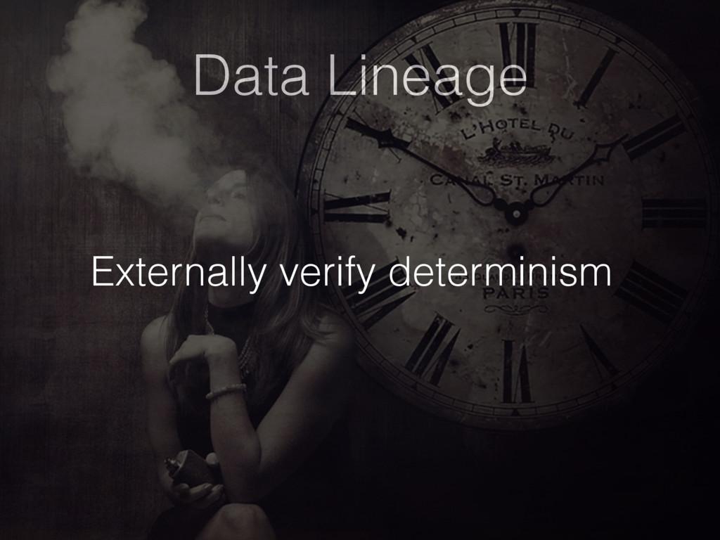 Data Lineage Externally verify determinism