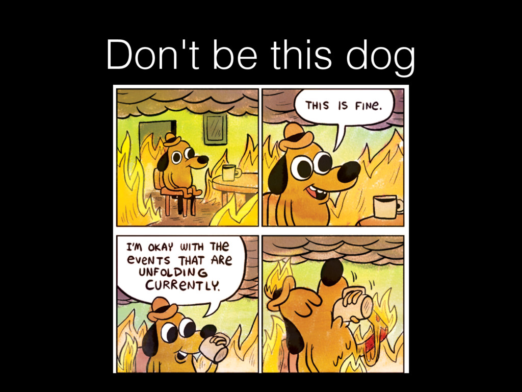 Don't be this dog