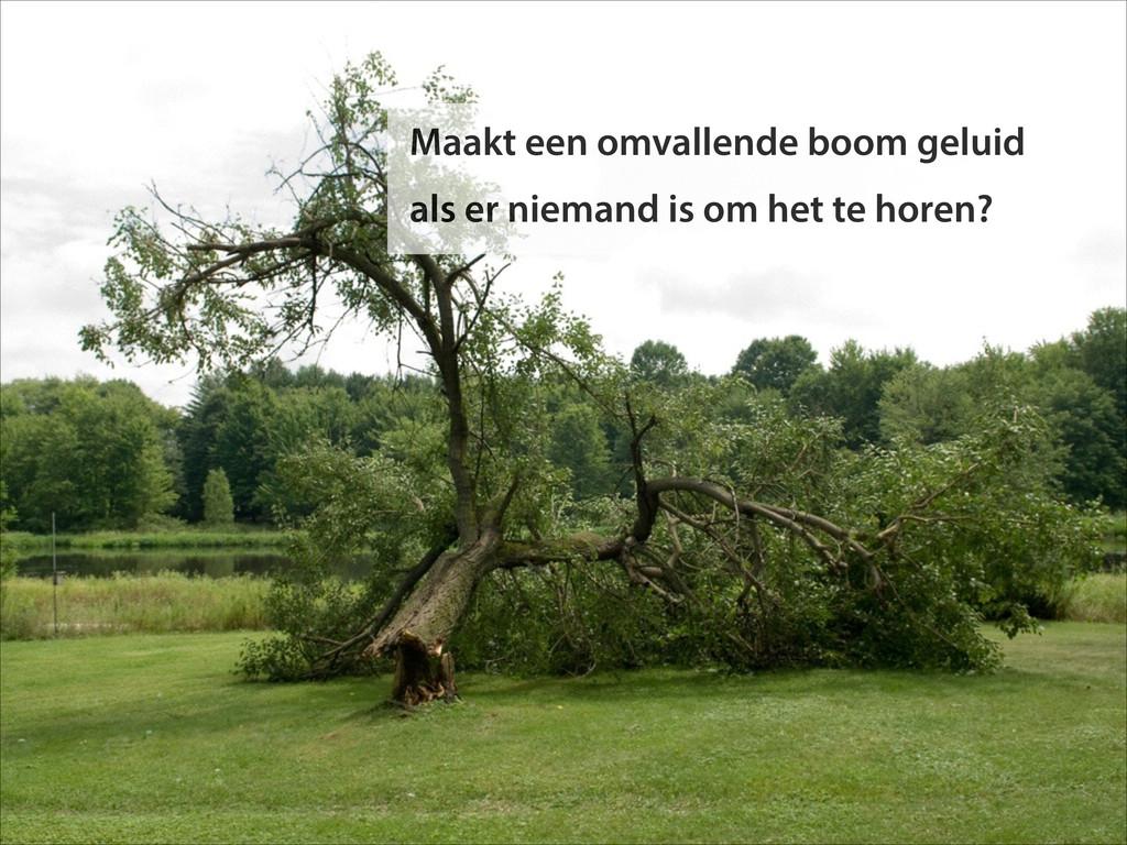 Maakt een omvallende boom geluid als er niemand...