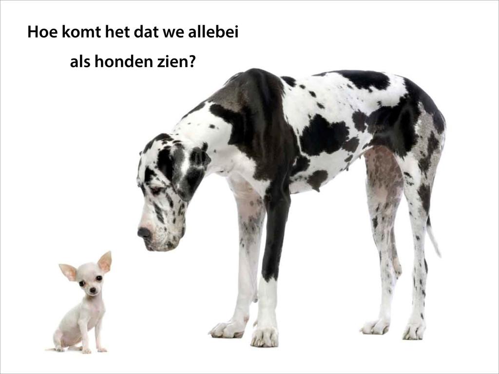 Hoe komt het dat we allebei  als honden zien?