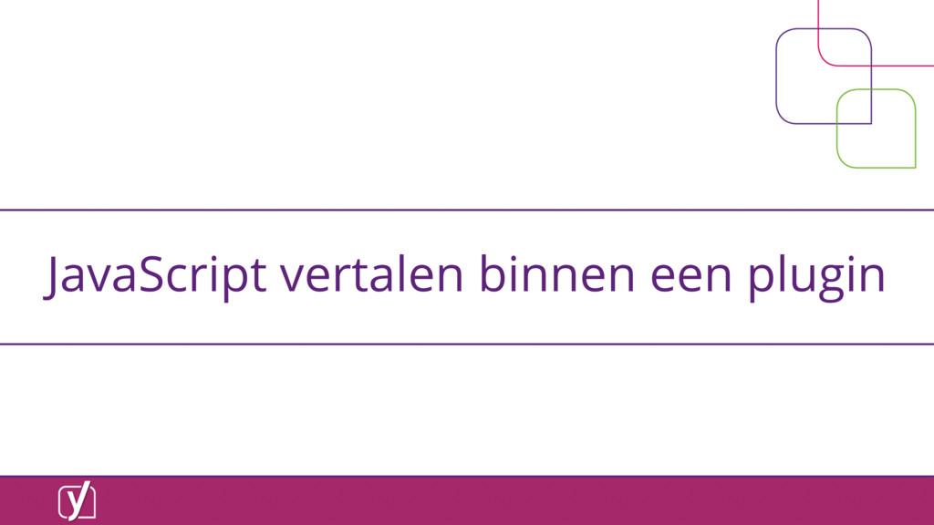 JavaScript vertalen binnen een plugin