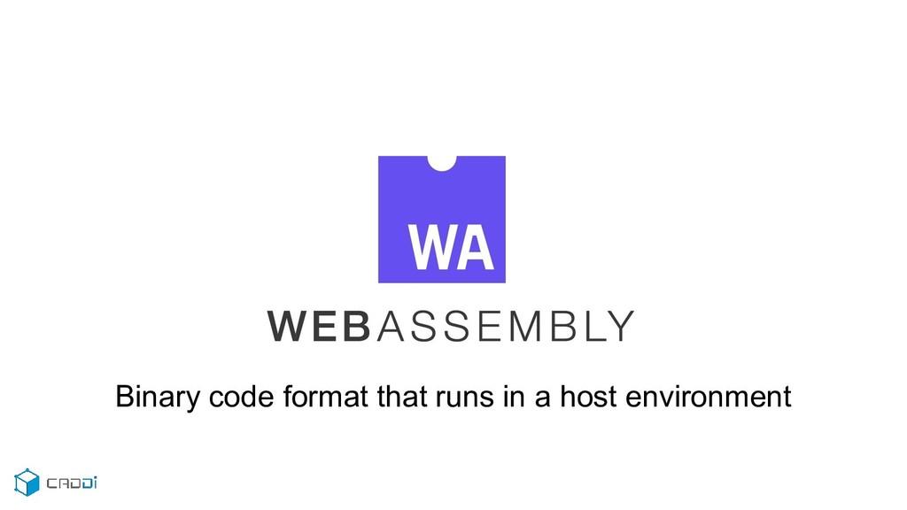 Binary code format that runs in a host environm...