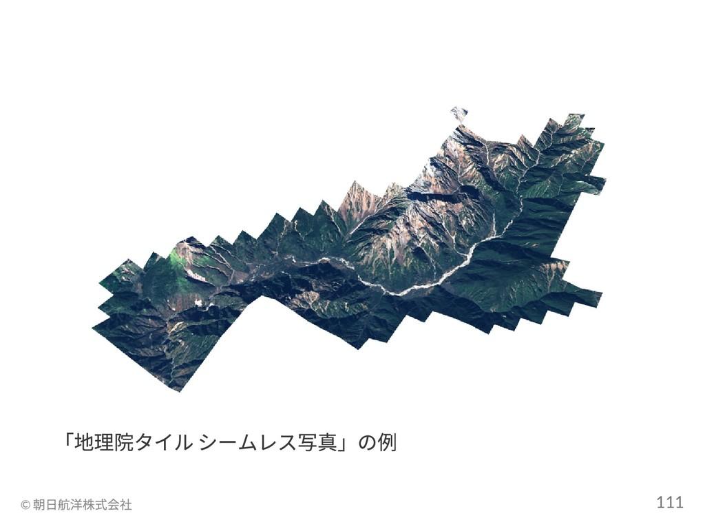 「地理院タイル シームレス写真」の例 © 朝日航洋株式会社 111