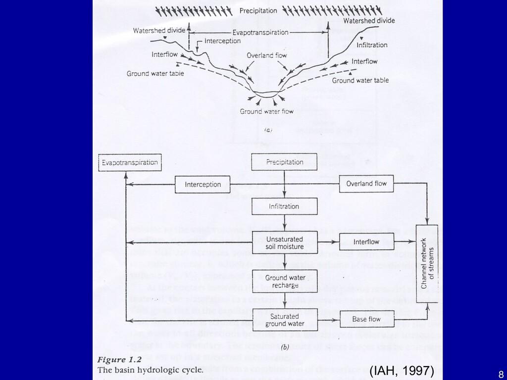 8 (IAH, 1997)
