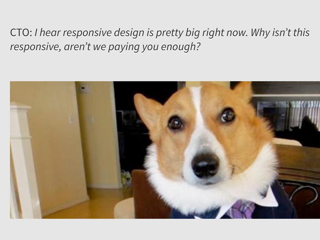 CTO: I hear responsive design is pretty big rig...