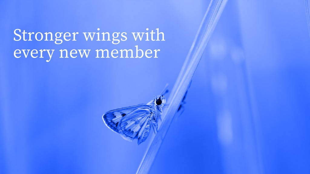 Stronger wings with every new member