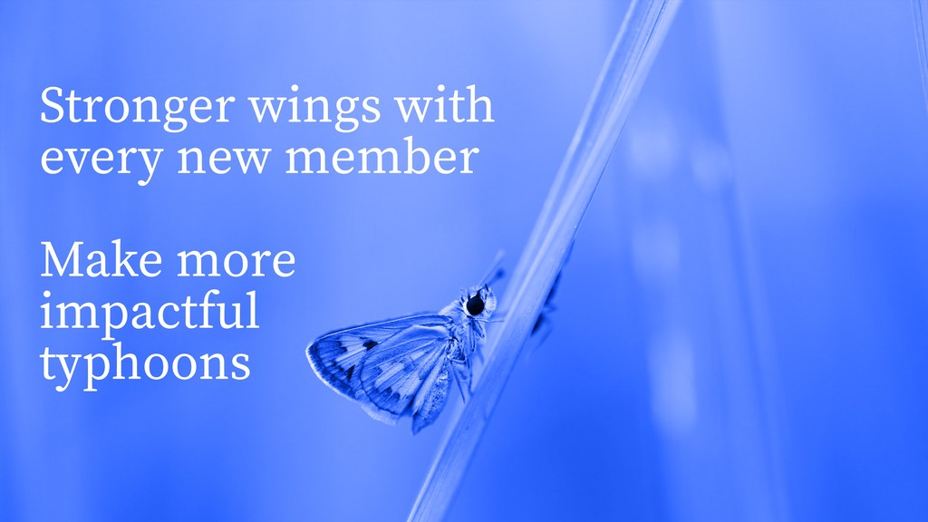 Stronger wings with every new member Make more ...