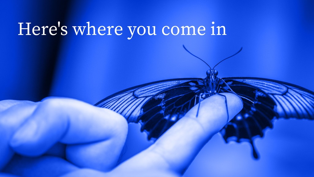 Here's where you come in