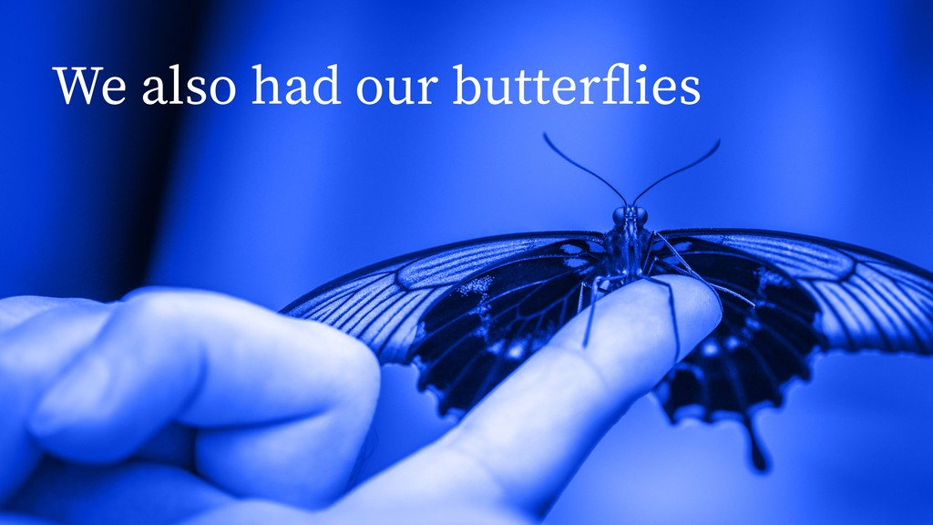 We also had our butterflies